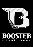 More about booster